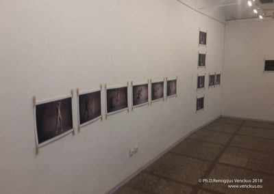 I Am Another -exhibition in Siauliai-2018-4