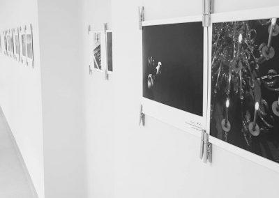 Ph.D. Remigijus Venckus' exhibition Location of Diaries no 3-2018-4